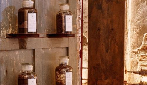В Италии откроют музей фекалий