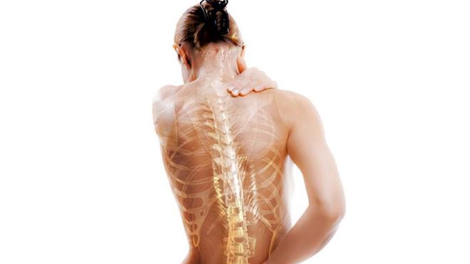 Найден новый способ лечения остеопороза
