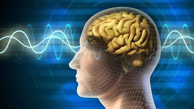 Как можно узнать потенциал головного мозга человека