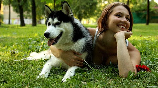Оказалось, что люди имеют схожий с собаками уровень гормонов
