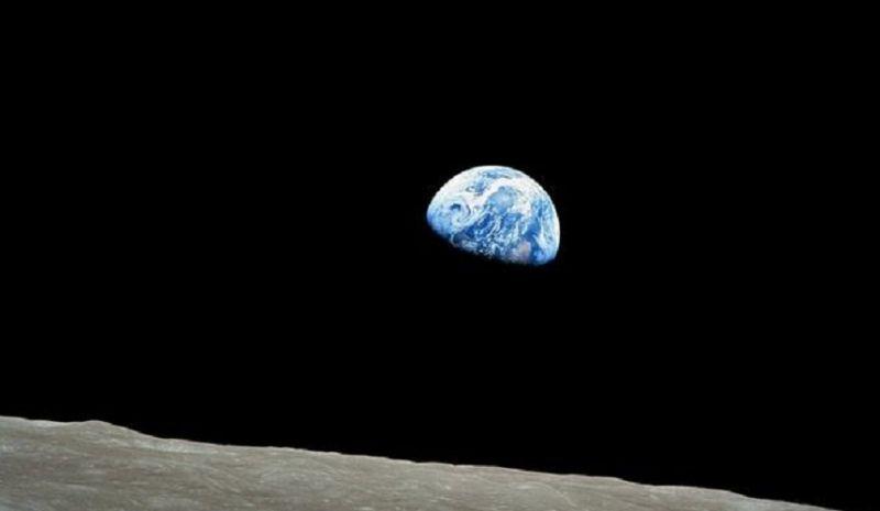 Планета Земля вступила в новую фазу полного вымирания