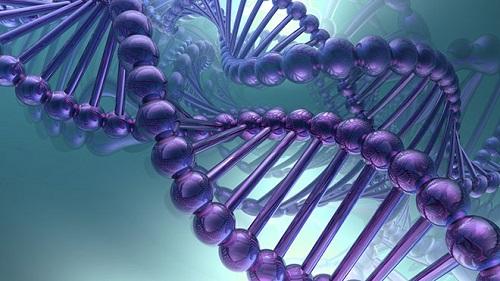 Обнаружен ген, который отвечает за появление опухолей мозга