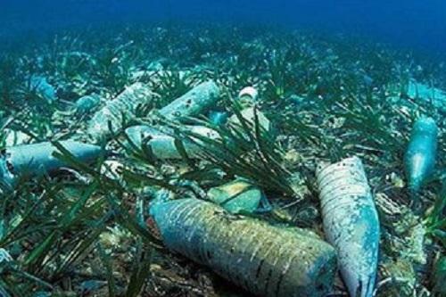Японские ученые займутся изучением влияния пластикового мусора на воды Антарктики