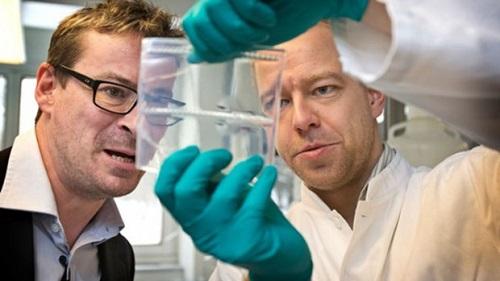 Эксперты одобрили первую в мире вакцину от малярии
