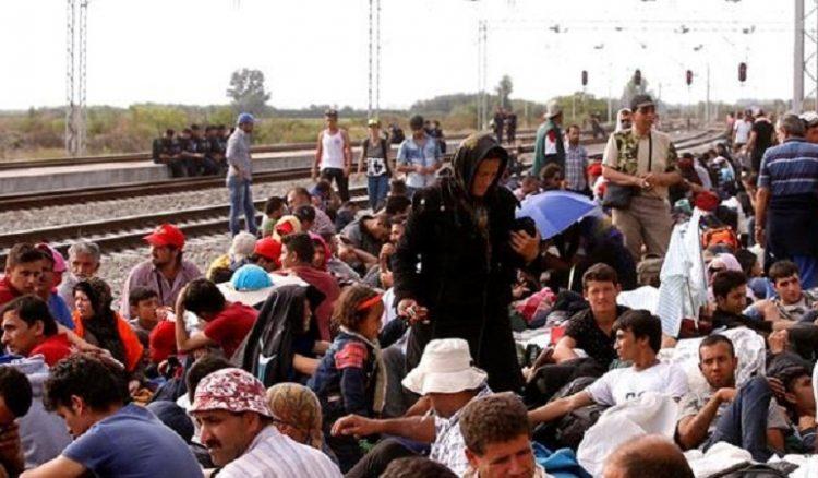 Правительство Канады намеренно ускорить процесс приема сирийских мигрантов