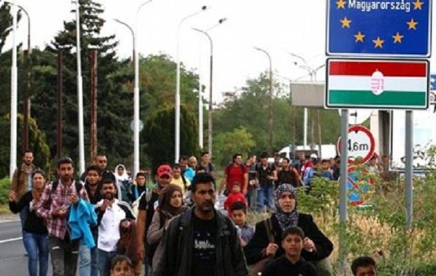 Правительство Австрия заявило о введении контроля на границе с Венгрией