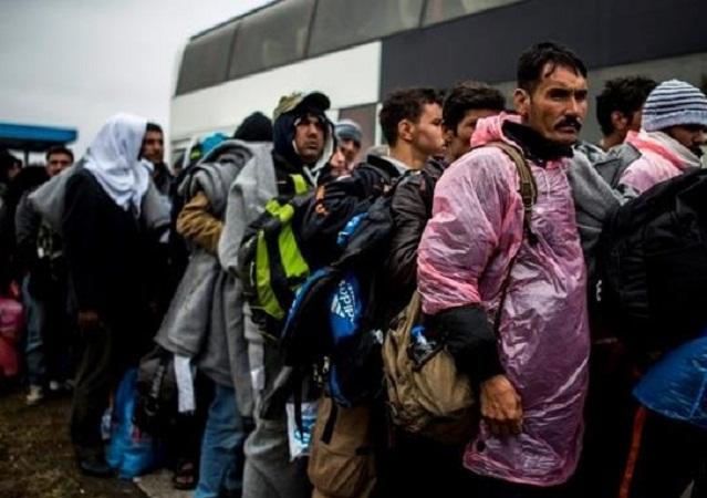 Венгрия готовится закрыть границу с Хорватией в связи с большим потоком нелегальных мигрантов