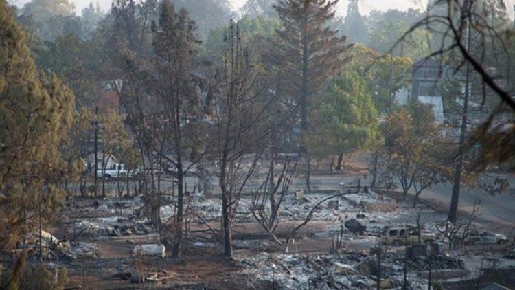 Калифорнию провозгласили зоной стихийного бедствия из-за неконтролируемых лесных пожаров