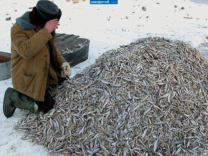 40 самых смешных приколов про рыбалку